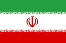 IRAN (NEW) - HAND WAVING FLAG (MEDIUM)